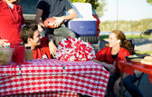 Tailgating: Focus On Empty Area On Picnic Table — Foto Stock