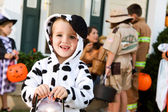 Halloween: Boy In Dog Costume Holds Light — Foto de Stock