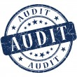 Audit stamp — Stock Photo #28161691