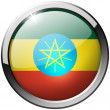Stock Photo: EthiopiRound Metal Glass Button