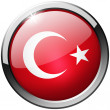 Turkey Round Metal Glass Button — Foto Stock