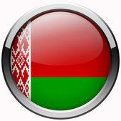 Belarus flag gel metal button — Stock Photo