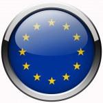 欧洲联盟标志凝胶金属按钮 — 图库照片