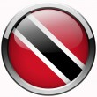Trinidad and tobago flag gel metal button — Stock Photo