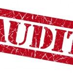 Audit grunge red stamp — Stock Photo #34512061