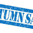 Stock Photo: Autumn sale grunge blue stamp