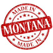 在蒙大拿州红圆 grunge 孤立邮票 — 图库照片