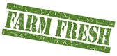 Farm fresh green square grunge textured stamp isolated on white — Foto Stock