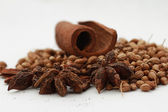Pepper, cinnamon and anise — Stock Photo