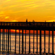 Panoramic view of the sunset with a bridge — Stock Photo