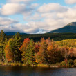 Stock Photo: Panoramic view of autumn landscape