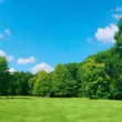 Stock Photo: Panoramic view of green landscape