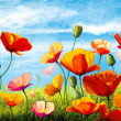Stock Photo: Multicolored poppies and blue sky