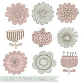 Bright vintage floral set in vector. — Stock Vector