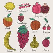 Bright fruit and berries set in vector. — Stock Vector