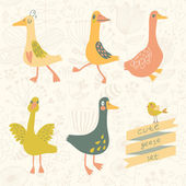 5 cute geese in vector set. — Stock Vector