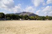 Sunny beach scene — Stockfoto