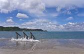 Paisaje marino — Foto de Stock