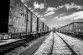 Train Containers — Foto de Stock