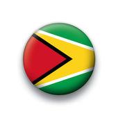 Vector bandera botón serie de todos los países soberanos - guyana — Vector de stock