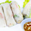 Vietnamese rice paper rolls with prawns — Stock Photo #31585143