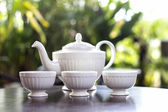 Tea pot with tea and cup delicious — Stock Photo