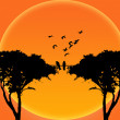 Silhouette birds on branch tree — Stock Photo