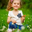 Smiling girl on the meadow with flowers — Stock Photo #25454485