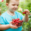 Happy baby eatting delicious cherries — Lizenzfreies Foto