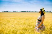 夏の畑で幸せ妊娠中の女性 — ストック写真