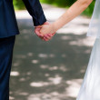 Back view of holding hands couple in love, bride and groom outdoor walking on field. — Stock Photo #28150305