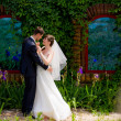 Happy couple in the nature. the bride and groom. kiss. wedding walk — Stock Photo