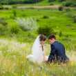 Newlyweds in a field — Stock Photo