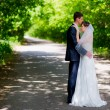 Wedding couple newlywed bride and groom in love at wedding day outdoors. — Stock Photo
