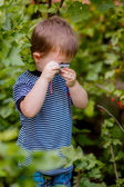 Little boy photographed in the garden — Foto Stock