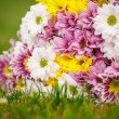 Beautiful bouquet of colorful flowers — Foto Stock