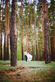 Couple in the forest — Stock Photo