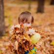 Boy walking in the autumn park — Stock Photo #30259191