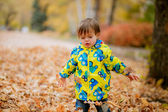 Happy boy in the autumn park — Stock Photo