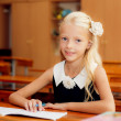 Stock Photo: Girl studying at school
