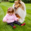 Stock Photo: Faithful collie dog watching small child.