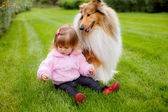 Faithful collie dog watching a small child. — Stock Photo