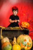 小さな女の子がハロウィーンの魔女の衣装 — ストック写真
