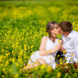 Young family kissing in summer field — Stock Photo #32334703
