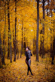 Sexual girl in the autumn forest — Stock Photo