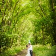 Wedding couple kissing  in the wood — Stock Photo