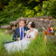 Groom and bride in the woods with a fruit basket — Stok fotoğraf