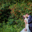 Wedding couple  kissing in the woods — Stock Photo