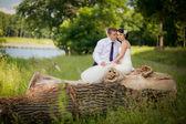 Happy wedding couple sitting on tree trunk — Stock Photo