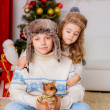 Stock Photo: Kids playing with dog chihuahunear Christmas tree